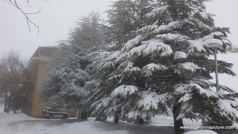 Snowing in Laklouk (Laqlouq, Lebanon)