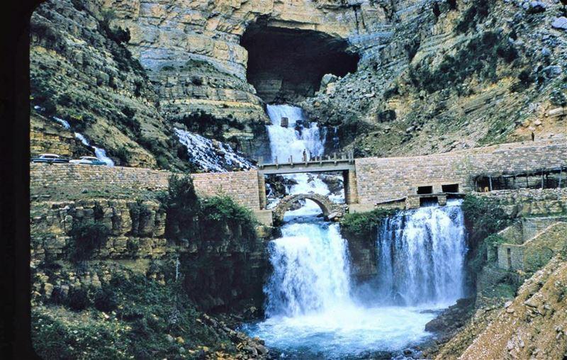Afqa Waterfall 1954