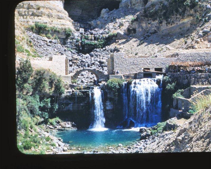 Afqa Waterfall 1953