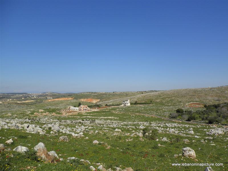 Yaroun's Beautiful Green Landscape (Spring 2011)