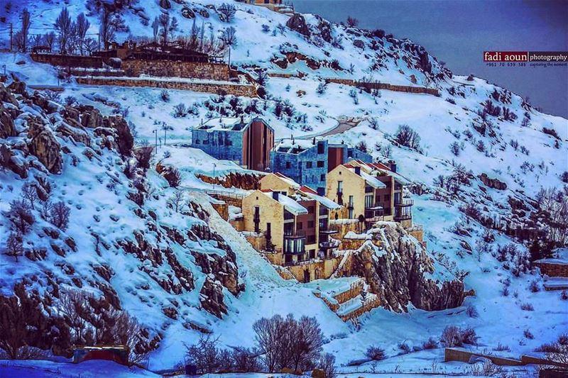 photo fadiaounphotography snow lebanon nature photoday ...