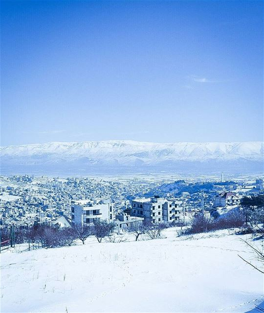 Zahle zahlelebanon snow 2017 tree like4like followforfollow ... (مقام سيدة زحلة والبقاع)