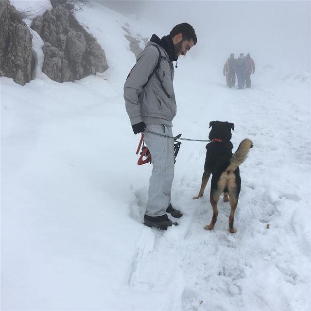 tb fog hiking hikingadventures snow snowshoeing hikingdog Oda adventure... (Barouk Cedar Forest)