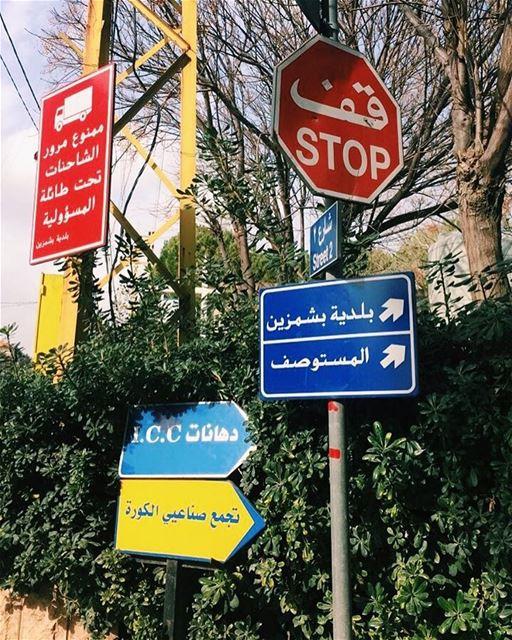 Easy andar por aqui 🇱🇧 bishmizzine libano ... (بلدية بشمزين Municipality of Bishmizzine)