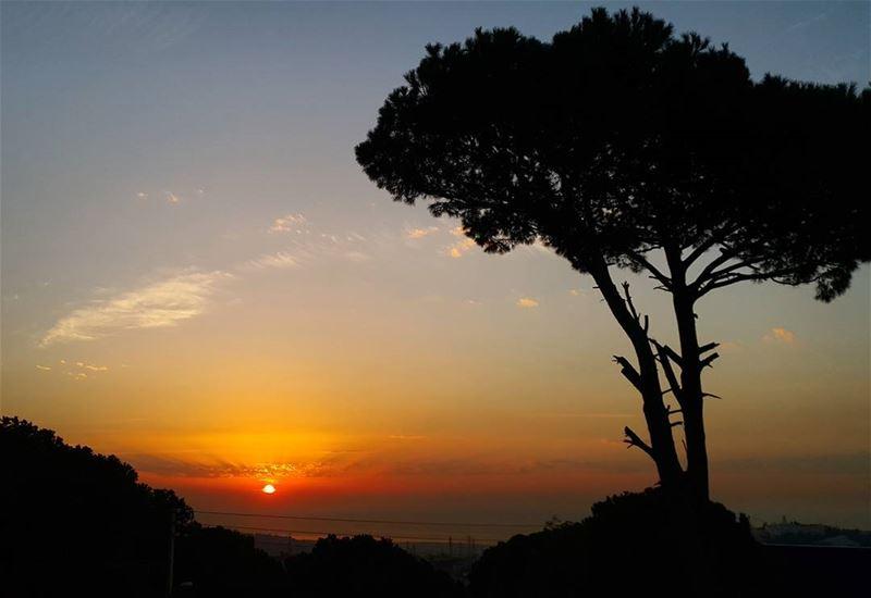 january winter sky skylovers skyline sunsetporn sunset ptk_sky ... (Kahale)