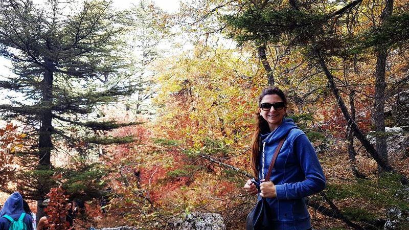cedars cedarforest lebanon nature 🌱🍂