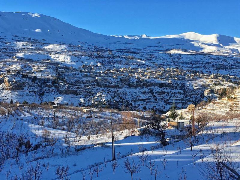 MorningSnow Sun &... (Bcharreh, Liban-Nord, Lebanon)