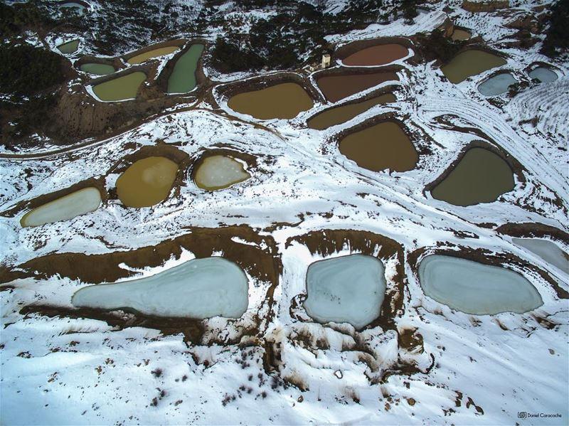 Nature's Palette felougha ig_lebanon ptk_lebanon lebanontraveler ...
