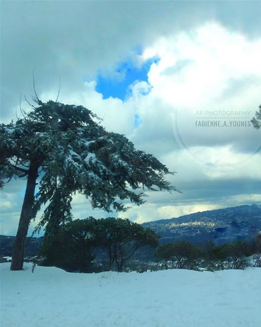 Snowflakes are like kisses from heaven ☃ mountains🗻  autofocusphotography... (Dhour El Chweir)