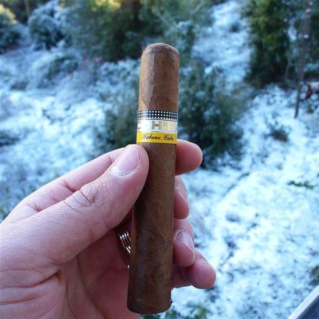Good Morning cigar cigars cigarsociety cigarsocialclub cigarmagazine...