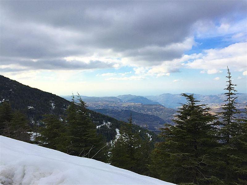 Lebanon ... (Barouk Cedar Forest)