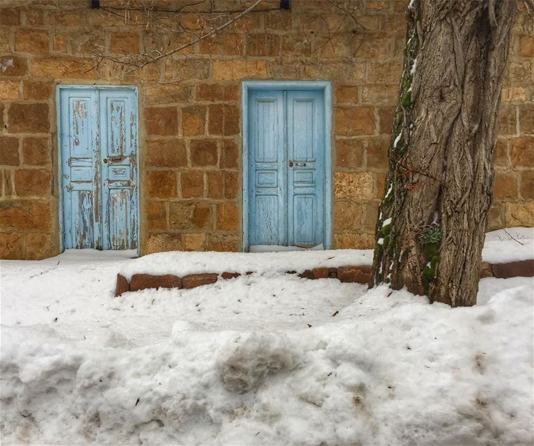 And after a Storm it's hard to escape but will find a way out! ... (Bâne, Liban-Nord, Lebanon)