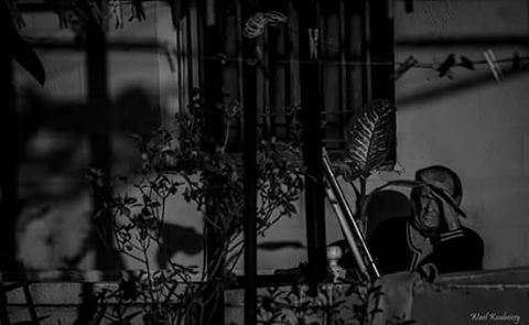 old  woman  balcony  people  plants  shades  sun  bnw  blackandwhite ...