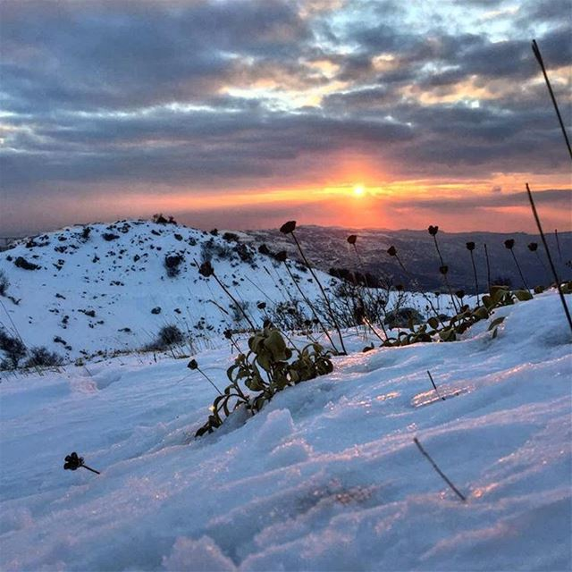 snow sunset winter sun nature mountains like4like lebanon livelovelebanon...