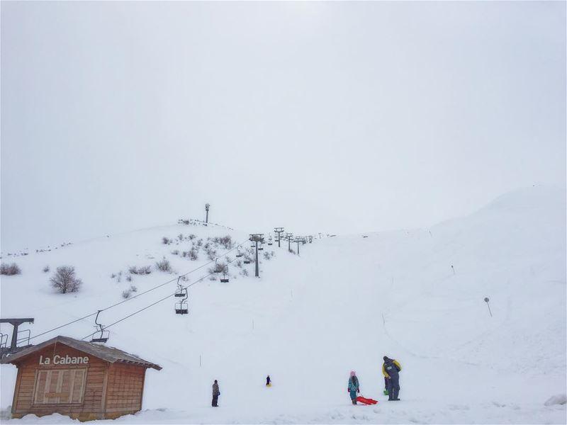 Mr. White ig_lebanon lebanonlovers beautifullebanon ... (Zaarour Club)