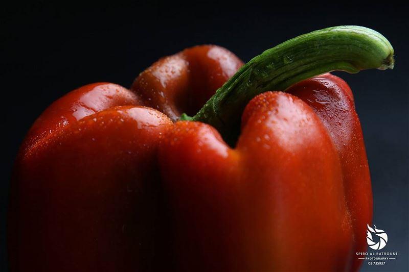 spiroalbatrouniphotography spirolens vegetal fx nofilter effect ...