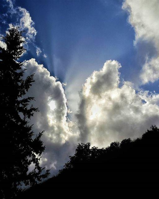 دع النور يدخل إليك ويذيب برودة قلبك،، هذا هو المغزى ان تكون قوياً 👌📷 ...