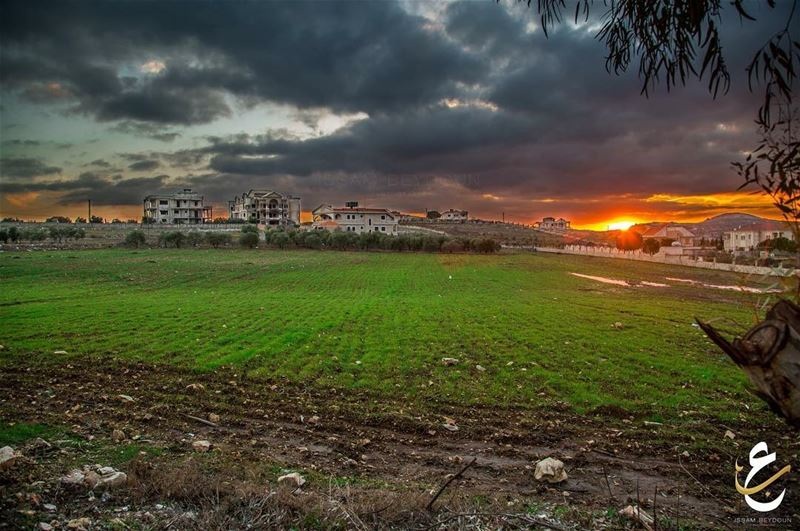 photography followforfollow like4like instabeauty instagram ... (Bint Jubayl, Al Janub, Lebanon)