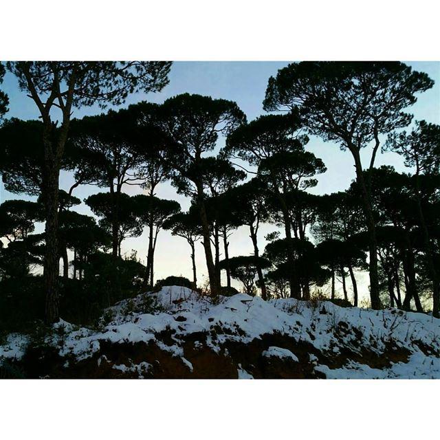 ❄⛄ sunday jezzine south southlebanon cold weather coldweather snow... (Jezzîne, Al Janub, Lebanon)