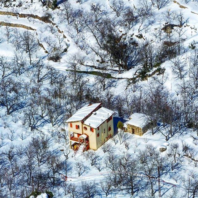 snowshoeinglebanon explorelebanon picoftheday livelovelebanon ... (Horsh Ehden)