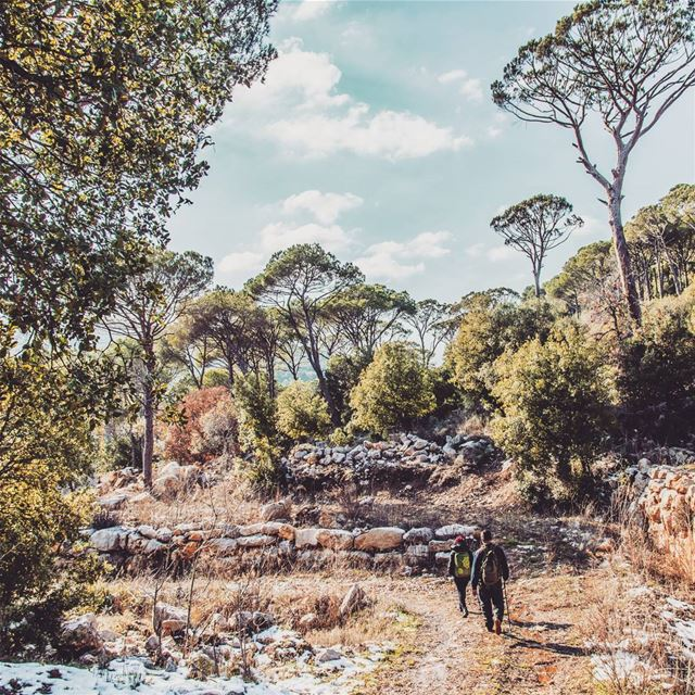 Arsoun hike on 29-01-2017. nature outdoors hiking photo photography... (Arsoûn, Mont-Liban, Lebanon)