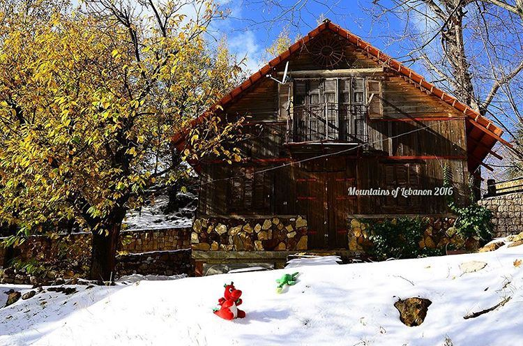 Ness & Griff playing on the Snow in front of The enchanted wood log cabin ( (Mayrouba)