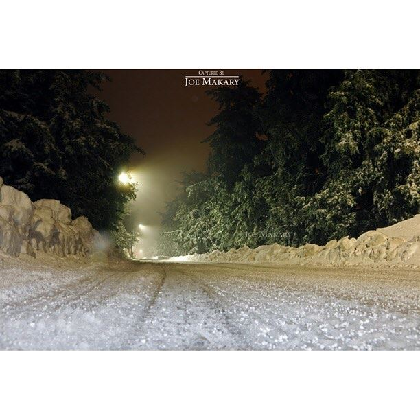 ehden  snow  night  light  ice  trees  beautifullebanon  thebestinlebanon...