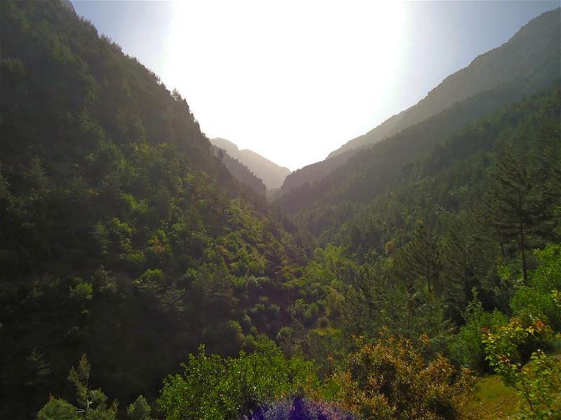 بيني وبينك تسع جبالوعرب وصحراوغيبة يوم lebanon lebanese ...