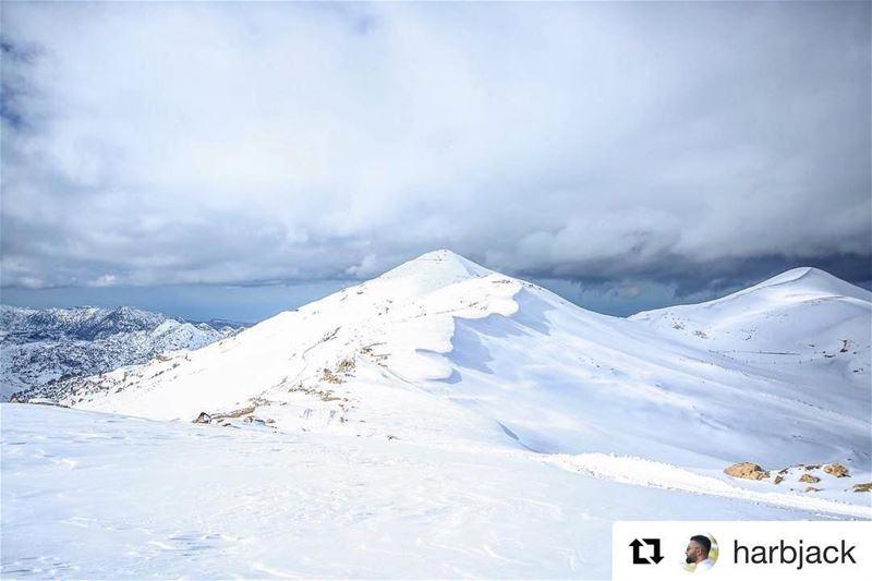 ʙᴇᴀᴜᴛʏ ɪs ᴇᴠᴇʀʏᴡʜᴇʀᴇ💙 Livelovetannourine mountains nature tannourine ... (Jered Tannourine)