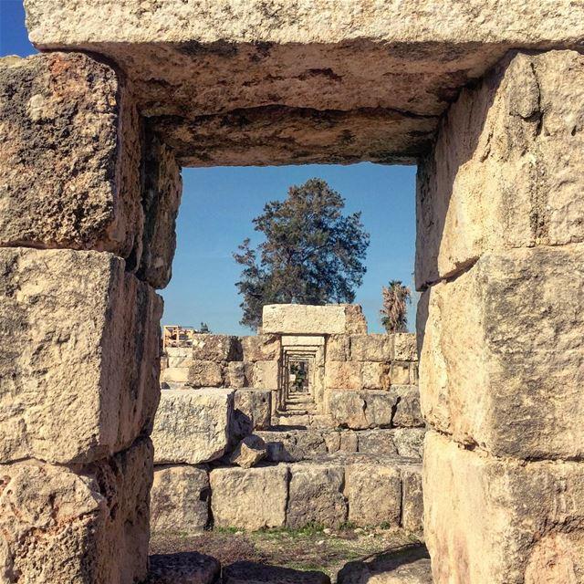 Dimensions. tyr tyre ruins roman romanruins lebanon south sour ... (Tyre, Lebanon)