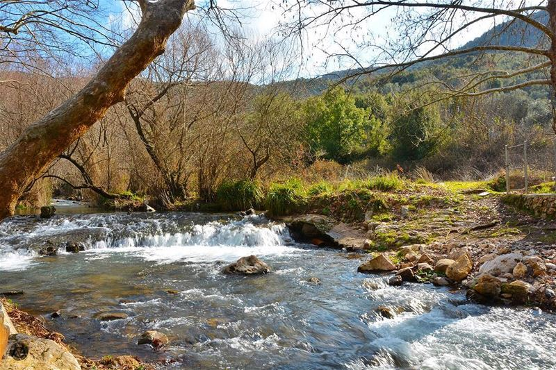 Life is a river. Try to keep up and flow. livelovelebanon livelovebeirut...