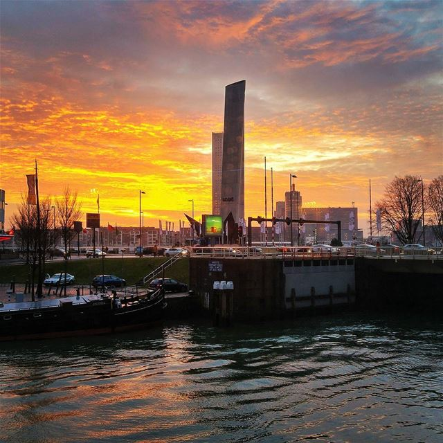 Beautiful sunset - Rotterdam 😍 rotterdam nature naturelovers ...