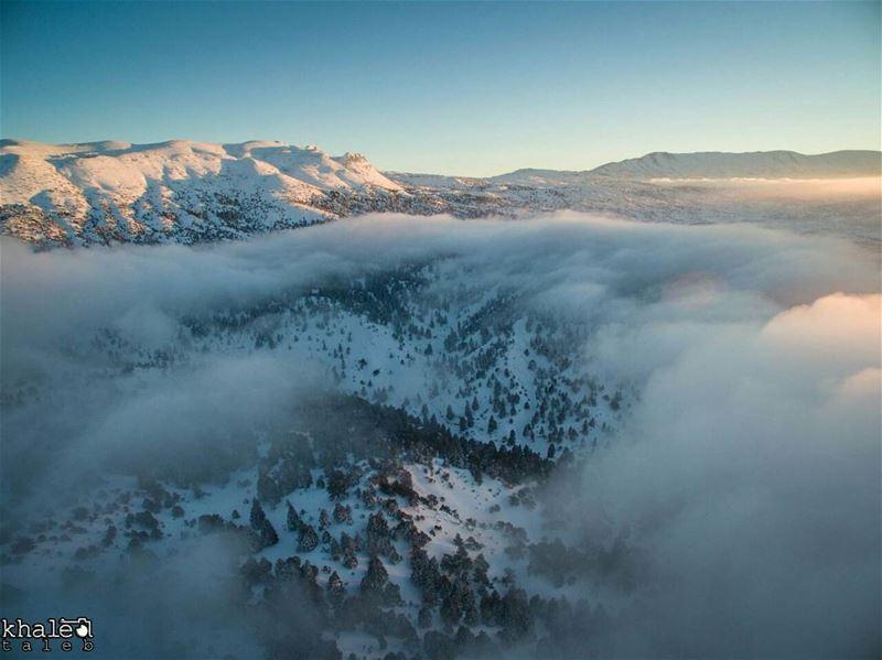 القموعة في لقطة بين قمم جبال الأربعين وقمة عروبة , وبينهما الضباب يتماهى م