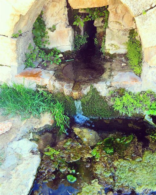 عين الحلقوم spring April lovelebanon instalike 40likes lebanon ...