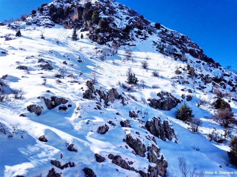 Snowing is an attempt of God to make the dirty world look clean ❄️⛄️❄️ ... (Mzaar Kfardebian)