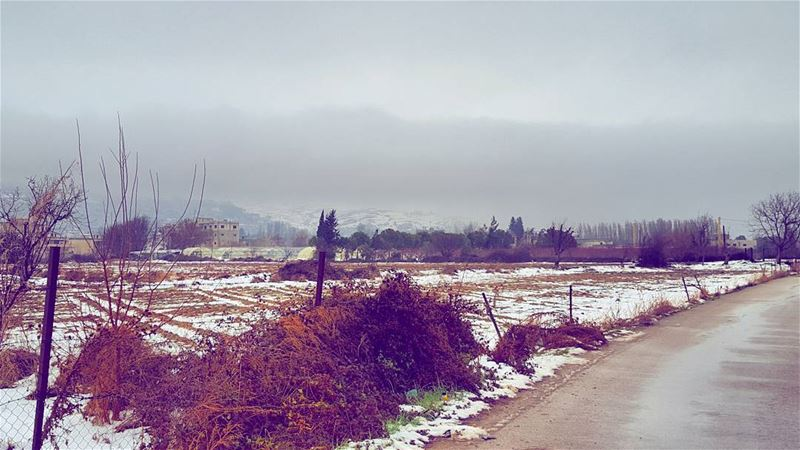 ThatPeace ... LiveLoveBekaa ... (Beqaa Valley)