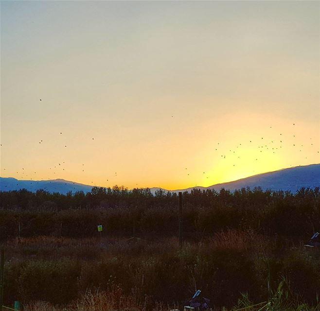 What's better than a Lebanese Sunset ?! 🌄 LiveLoveLebanon ... (Bekaa Valley)