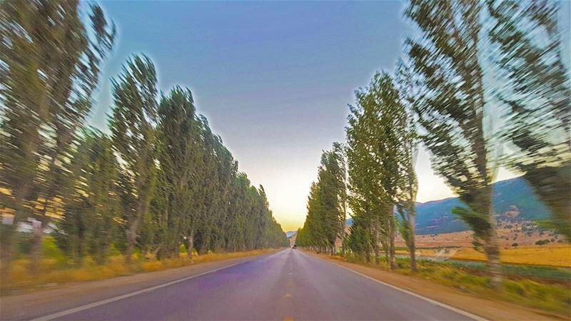 Let's go on a RoadTrip... Escape. LiveLoveLebanon ... (`Ammiq, Béqaa, Lebanon)