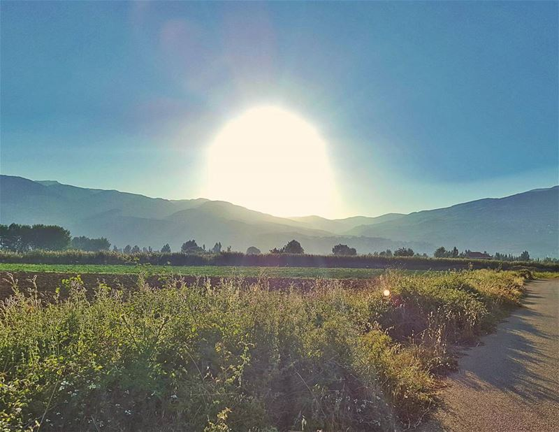 GoodMorning ... (Beqaa Valley)