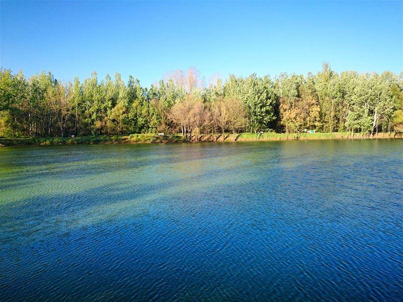 صباحو. (Taanayel Lake)