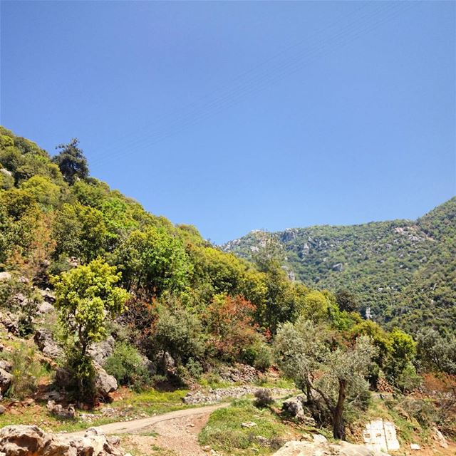 I Always Choose Difficult Roads coz Often it Leads To Beautiful ... (Dhoûr Ech Choueïr, Mont-Liban, Lebanon)