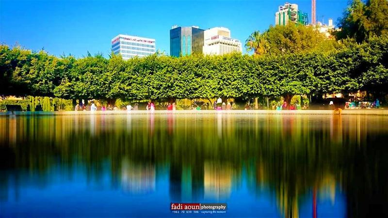 photo  lebanon  garden  reflection  green  hamra ...