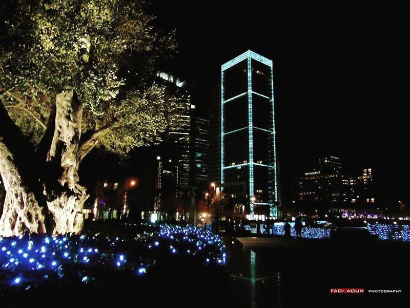 photo fadiaoun @faaoun night beirut lebanon tree lights ...
