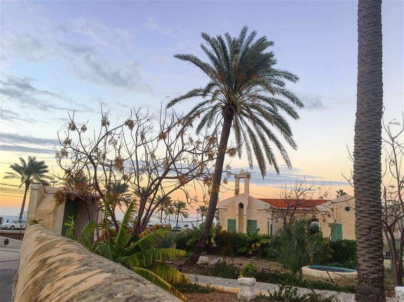 يا حبّذا الأيام ضاحكةٌ والوعدُ موفورٌ لمن وعِدواوالعمرُ خيّالٌ وقصتنا قيثا (Al Kharab Beach)