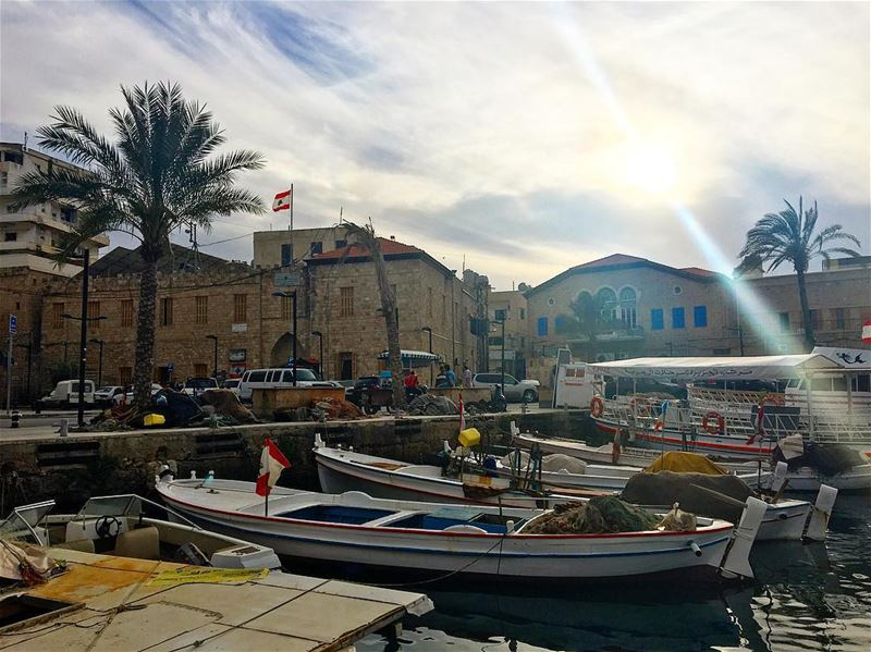 صباح الخير ☀️⛵️ livelovetyre livelovejnoub tyrepage tyre ... (Tyre Fishermen Port.)