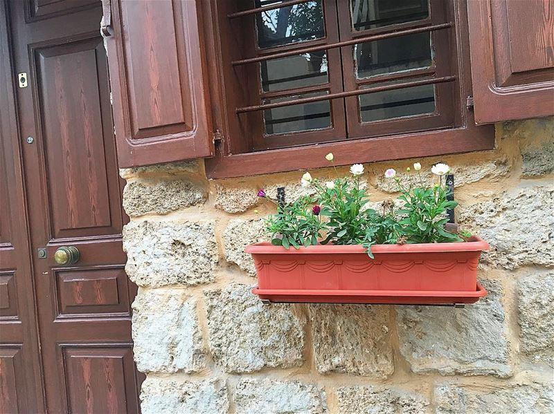 لما كنّا ولاد زغار كتبتلك إسمك مرة، وحفرتو عباب الدار وزرعنا وردة حمرا.. قل (Tyre, Lebanon)
