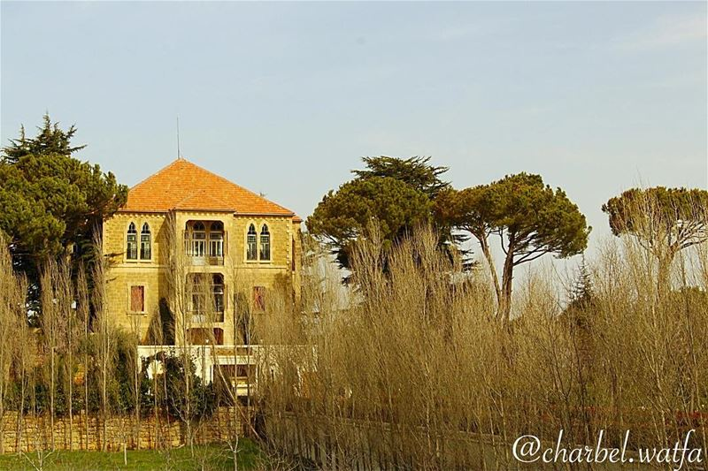 House of Lebanon @lebanonhouses spring blossom flowers beautiful ...