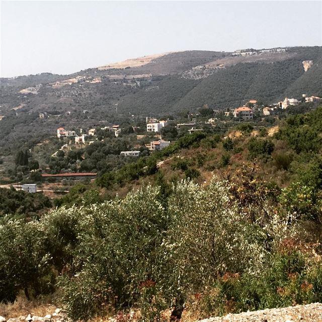 Rashana north Lebanon mountains greenery olive tree fresh air no...