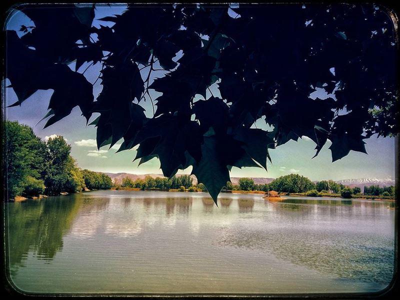 taanayel lake lakeview naturalreserve bekaa beqaa lebanon nature ... (Taanayel- Bekaa)
