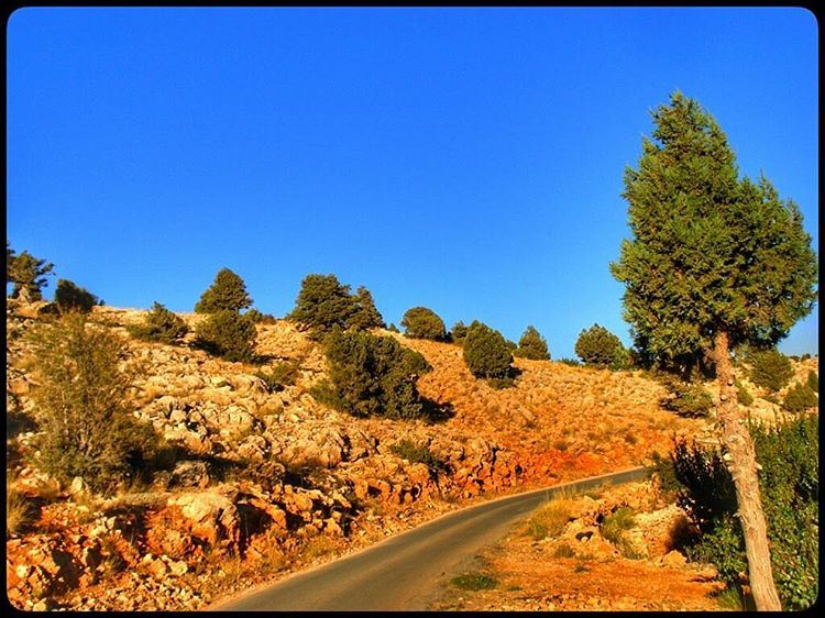 bekaa  lebanon  highland  mountainroad  mountains  nature  naturelovers ... (Al-Bekaa - Lebanon)